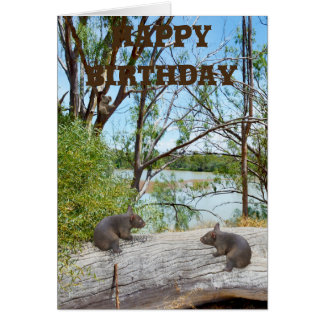 Baby Wombats Playing On A Log, Birthday Card