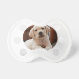 Baby Yellow Labrador Puppy Dog laying on Belly Pacifiers