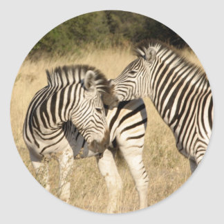 Baby Zebra and Mom Classic Round Sticker