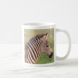 Baby zebra head, Tanzania Coffee Mug