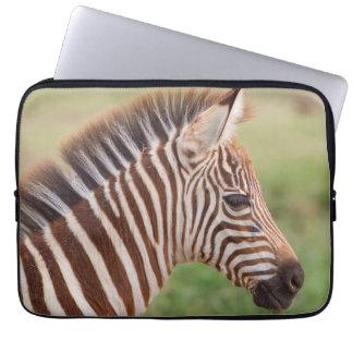 Baby zebra head, Tanzania Laptop Sleeve