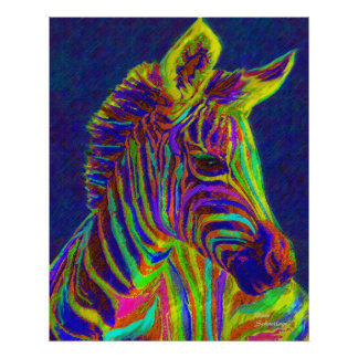 baby zebra in crayon colors poster