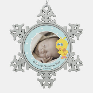 Baby's First Christmas - Big Bird Pewter Snowflake Decoration