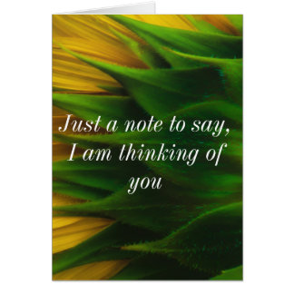 Back of Sunflower Greeting Card. Card