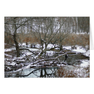 Back River in Winter Card