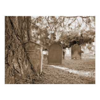 Back To Nature - Gravestones and Trees Poster