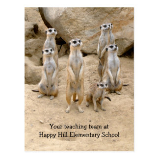 Back to School, Team Teaching Meerkats Postcard