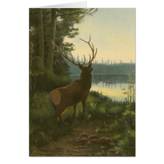 Back view of Elk Looking over a Lake Greeting Card