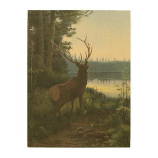 Back view of Elk Looking over a Lake Wood Print