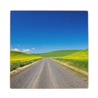 Backcountry road through Spring Canola Fields Maple Wood Coaster