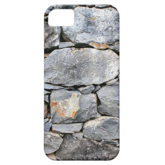 Backgound of natural stones as wall barely there iPhone 5 case
