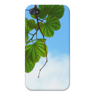 Backlit Leaves and Sky iPhone Case Covers For iPhone 4
