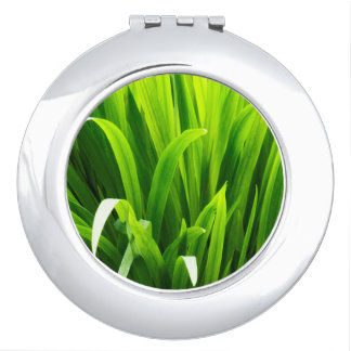 Backlit Leaves in Garden Compact Mirror