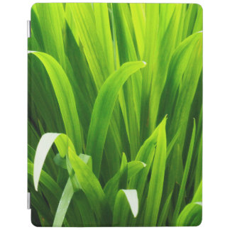 Backlit Leaves in Garden iPad Cover
