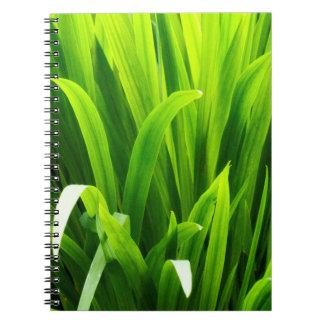 Backlit Leaves in Garden Spiral Notebook