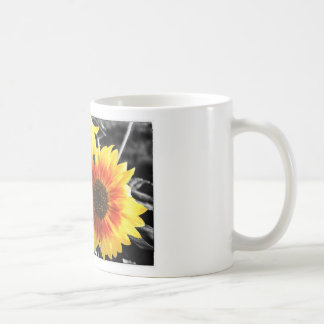 Backlit Sunflower with B&W Coffee Mug