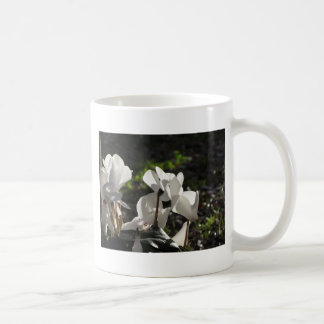 Backlits white cyclamen flowers on dark background coffee mug