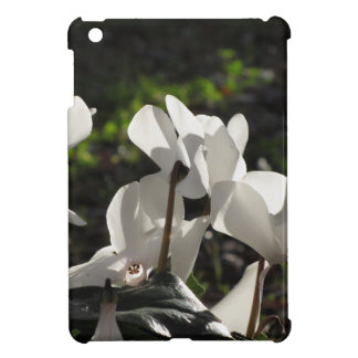Backlits white cyclamen flowers on dark background iPad mini cases