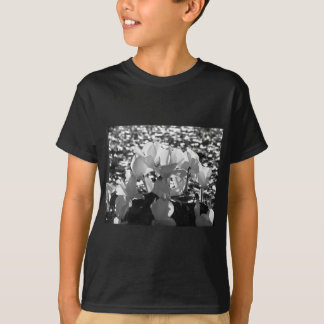 Backlits white cyclamen flowers on dark background T-Shirt