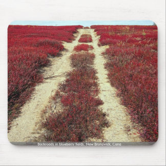 Backroads in blueberry fields, New Brunswick, Cana Mouse Pad