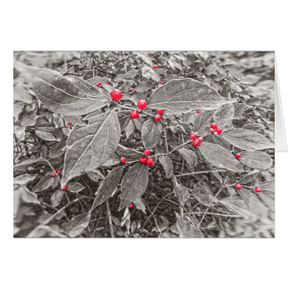 Backyard Berries and Leaves, Black and White Greeting Card