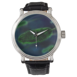 Bacteria Microbes Watch