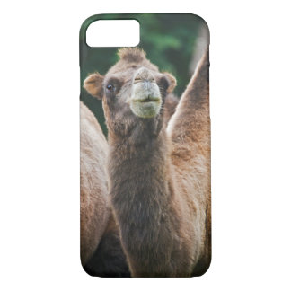 Bactrian Camel iPhone 7 Case