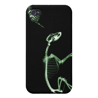 Bad Dog X-Ray Skeleton in Black & Green Case For iPhone 4