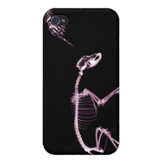 Bad Dog X-Ray Skeleton in Black & Pink Case For iPhone 4