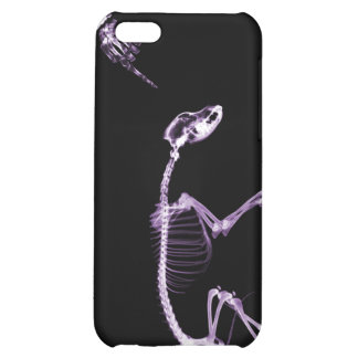 Bad Dog X-Ray Skeleton in Black & Purple Case For iPhone 5C