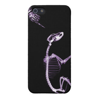 Bad Dog X-Ray Skeleton in Black & Purple iPhone 5 Case