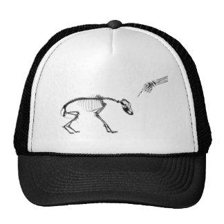 Bad Dog X-Ray Skeleton in Black & White Hat