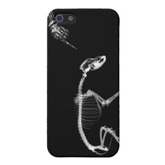 Bad Dog X-Ray Skeleton in Black & White iPhone 5 Cover