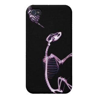 Bad Dog X-Ray Skeleton Original Pink Cases For iPhone 4