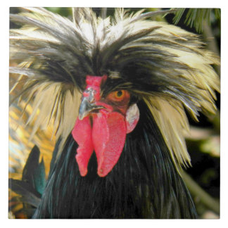 Bad Hair Chicken Photo Large Square Tile