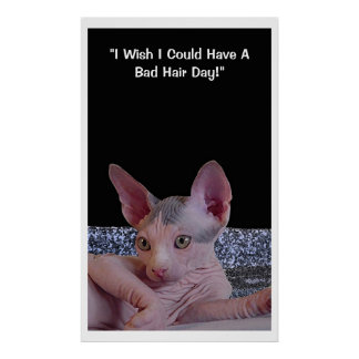 """Bad Hair Day"" Poster"