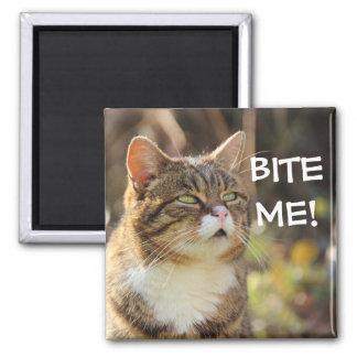 """Badass Cats - """"BITE ME!"""" Magnet"""