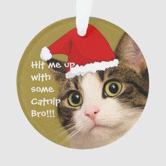 "Badass Cats - ""Catnip"""