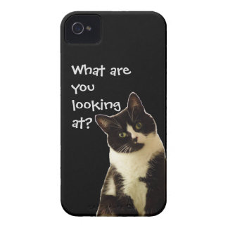 """Badass Cats """"What are you looking.."""" iPhone 4 Cases"""