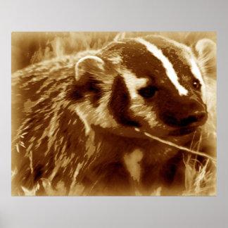 badger 1 poster
