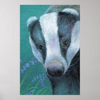 Badger in the bluebell woods art poster