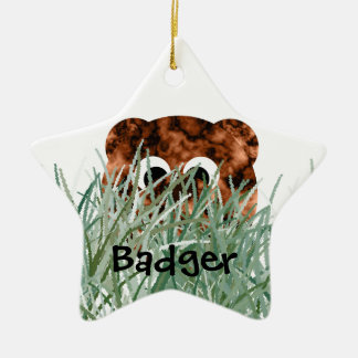 Badger in the grass ceramic star decoration