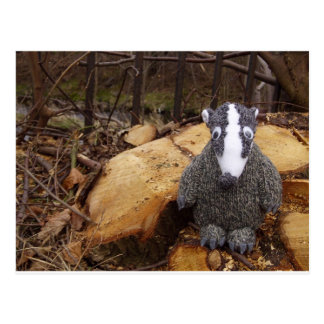 Badger in the Woods Post Cards