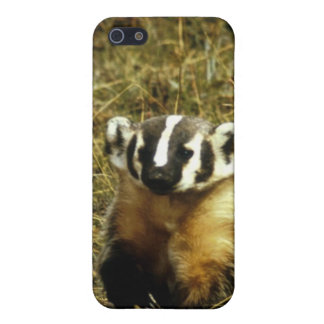 Badger iPhone 5 Cover