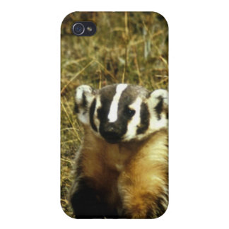 Badger iPhone 4 Cases