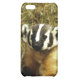 Badger iPhone 5C Cover
