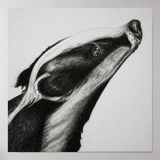 Badger Print