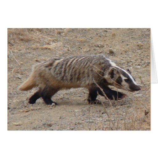 Badger Walking Card