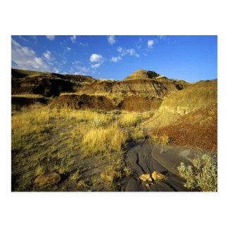 Badlands at Dinosaur Provincial Park in Alberta, Postcard