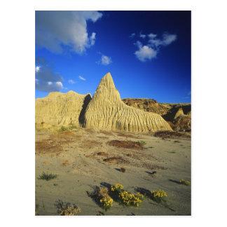 Badlands formations at Dinosaur Provincial Park 7 Postcard